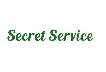 Secret Service Officer Discloses Information (First letter)